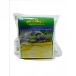 Telo Tessuto non Tessuto 1,60 lung. mt. 10  gr/mq. 17- protezione piante invero Tnt