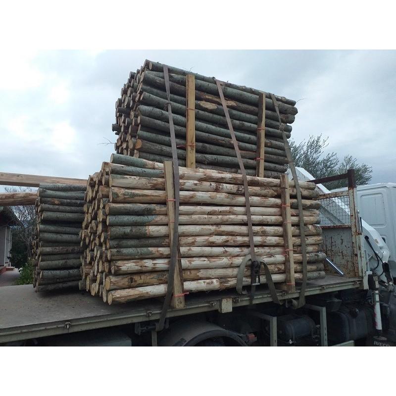 Pali di castagno per recinzioni 10/12 cm Altezza 2,50 mt  Sbucciati no punta