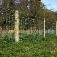 Pali e recinzioni